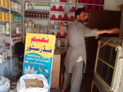 Awais-Ur-Rehman